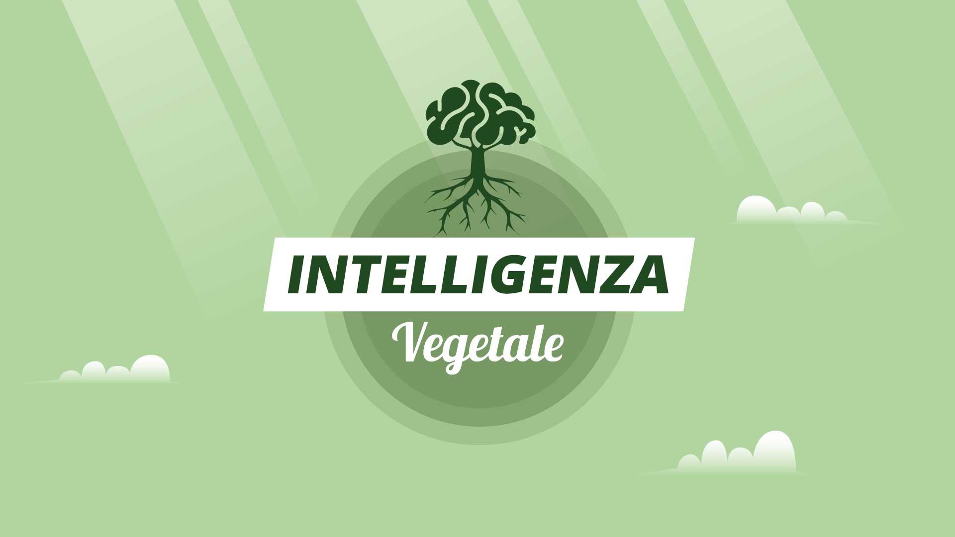 Intelligenza Vegetale Ponte di Legno Centro Formativo